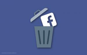#DeleteFacebook Facebook in the Trash